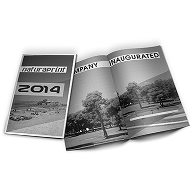 Dípticos A4 escala de grises